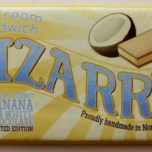 Bizarre - ice cream sandwich